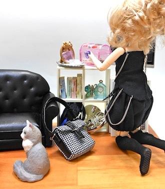 リーメントうちの自慢のにゃんこのブログ猫