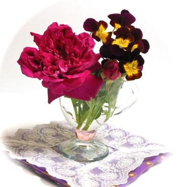 紫燕飛舞(ツーヤンフェウー)オールドローズとビオラ