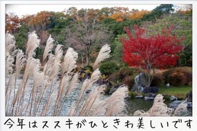 2013-11-kouraku04.jpg