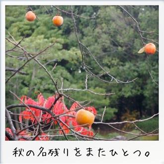 2013-11-kouraku08.jpg