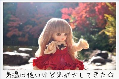 2013-11-kouraku12.jpg