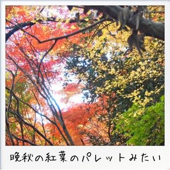 2013-11-kouraku13.jpg
