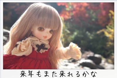 2013-11-kouraku16.jpg