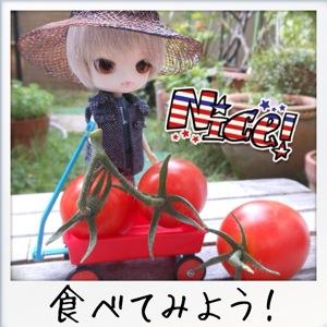 リトルダル+おんどりと家庭菜園