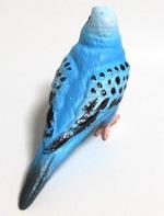 bird03.jpg