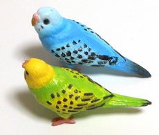 bird07.jpg
