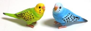 bird09.jpg