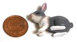 rabbit06.jpg